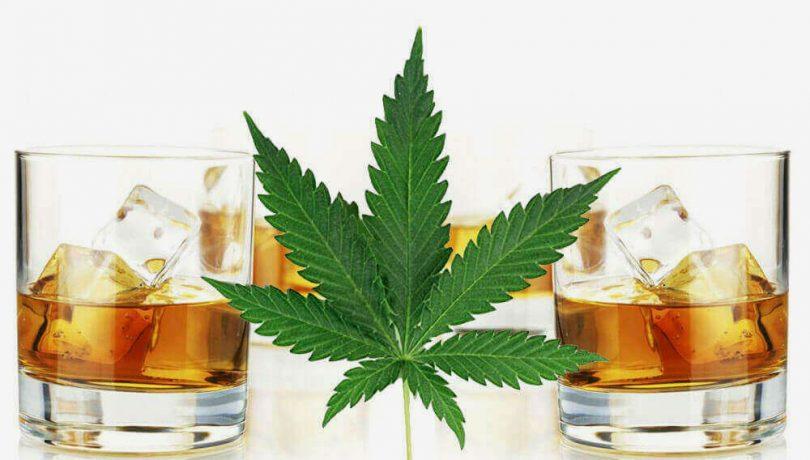 Herbal Morning Refresher